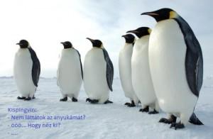 pozicionalj_pingvinek_felirattal